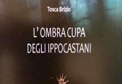 """12/4/2019 presentazione del libro""""L'ombra cupa degli  ippocastani"""" di T. Brizio"""